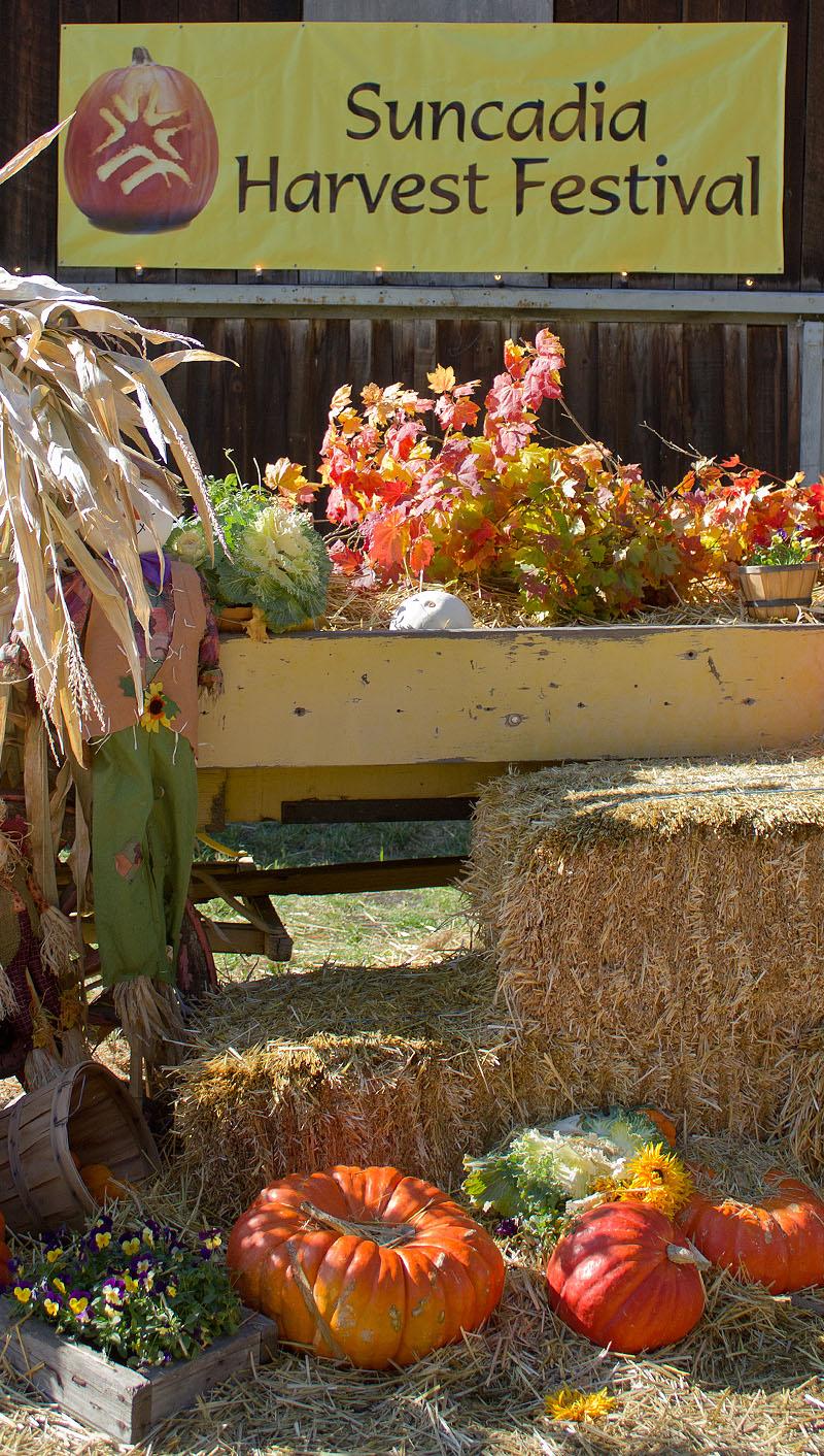 Suncadia's Harvest Festival 2011